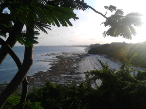 Mombasa (469)